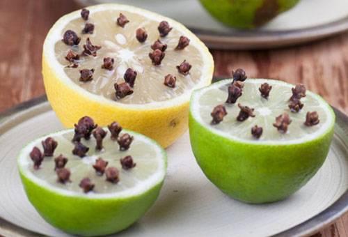 Отпугиватели мошек из фруктов и гвоздики