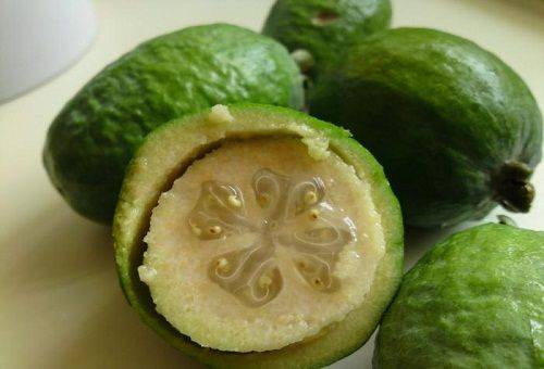 спелый плод фейхоа