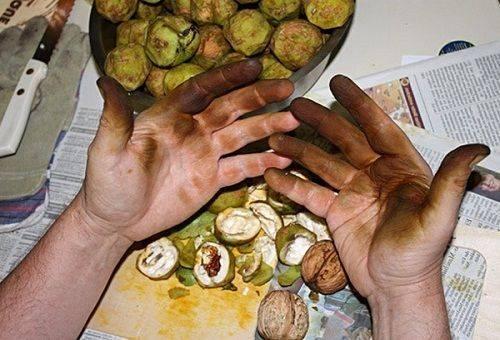 пятна на руках от орехов
