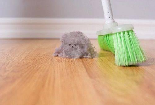 пыль на полу