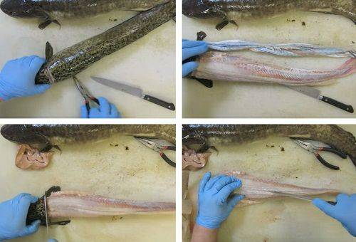 этапы чистки рыбы 2