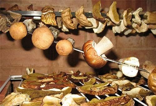 Сушка грибов на шампурах