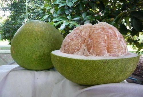 Как употреблять фрукт памела