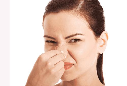 Как убрать запах собачьей мочи с дивана