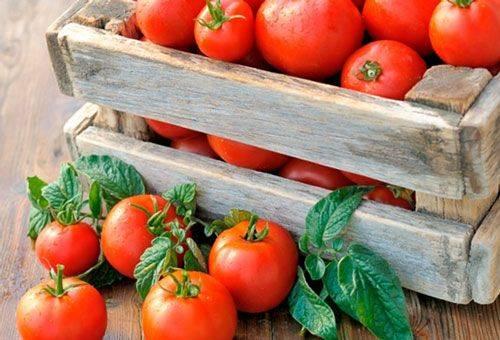 спелые помидоры в ящике