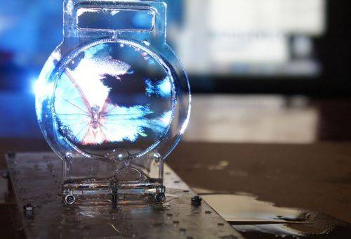 законсервированный мыльный пузырь