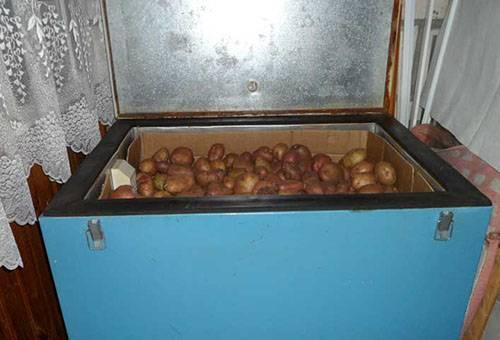 Хранение овощей на балконе зимой при минусовой температуре.