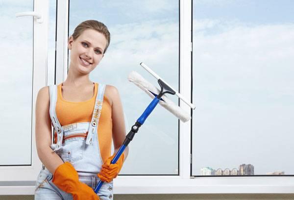 Девушка вымыла окна