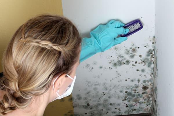 Девушка счищает плесень со стены