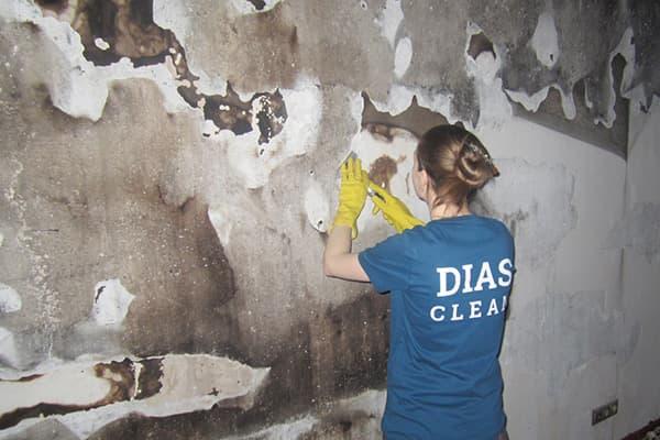 Сотрудница клининга делает уборку после пожара