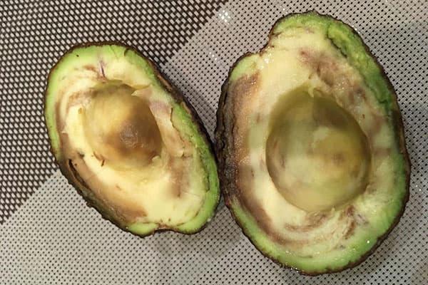 Испорченный плод авокадо