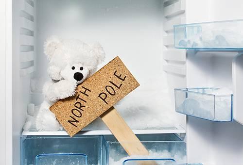 Морозилка с плюшевым полярным медведем
