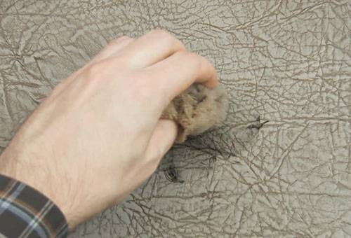 Удаление пятна от ручки с кожаного дивана