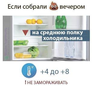 Сколько хранить кал в холодильнике