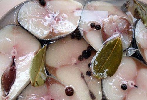рыба в тузлучном рассоле