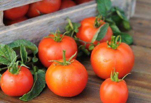 красные помидоры в ящике
