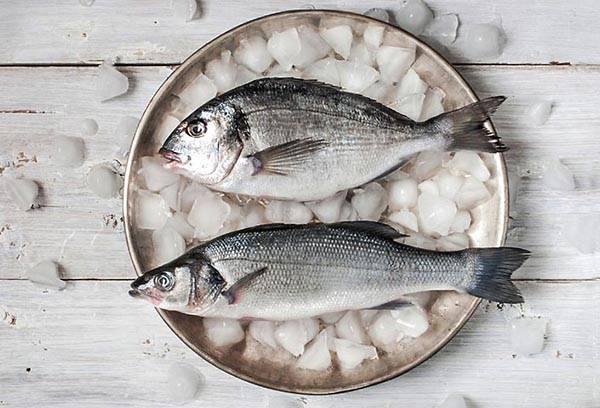 Рыба на тарелке со льдом