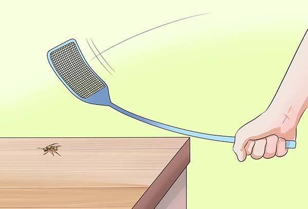 Истребление ос мухобойкой