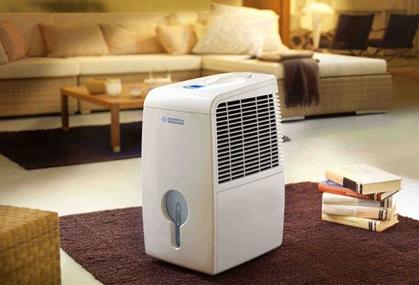 Ионизатор воздуха в квартире