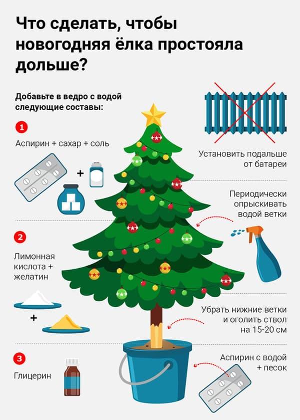 Правила ухода за новогодней елкой