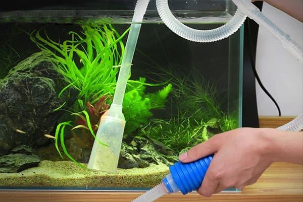 Чистка грунта в аквариуме с рыбками