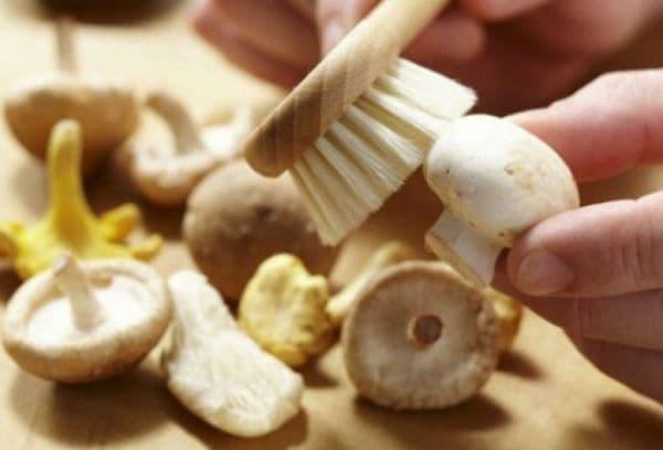 чистка грибов щеткой