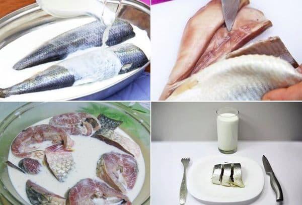 Рыба в молоке