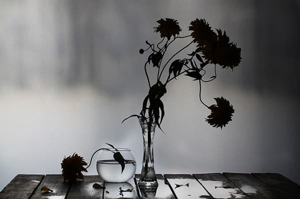 Увядшие цветы в вазе