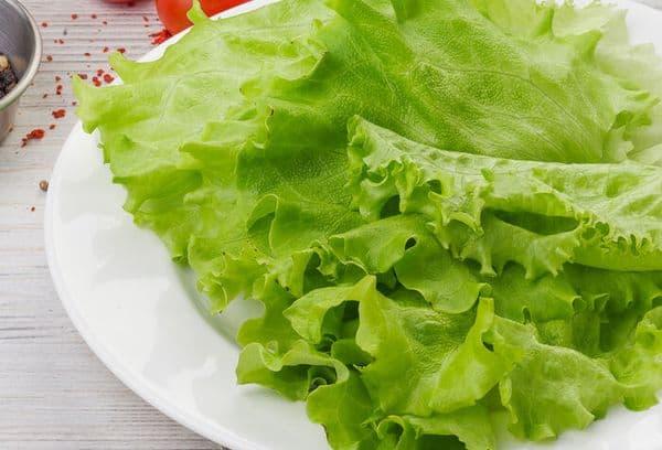 Салатные листья свежие