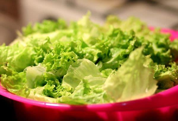 Промытый зеленый листовой салат