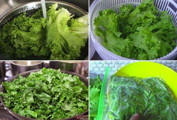 Приготовление и заморозка салата