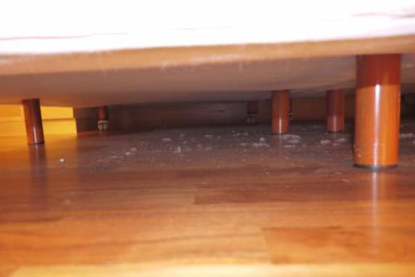 Пыль под диваном