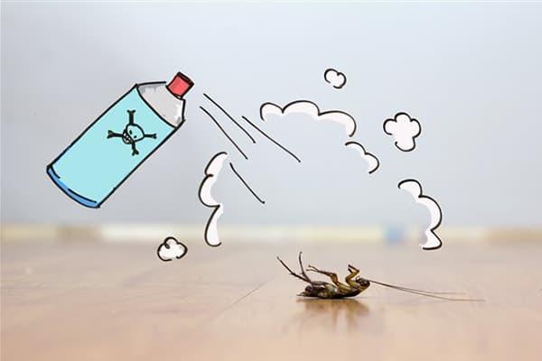 Уничтожение таракана аэрозолем