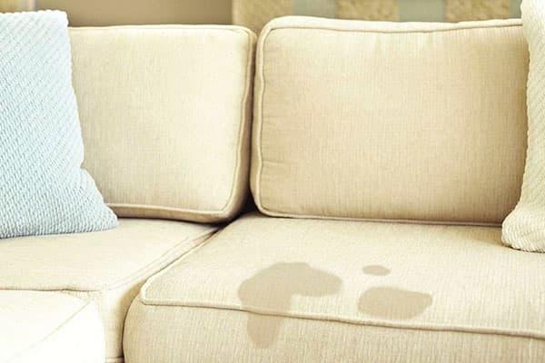 Пятна от мочи на диване