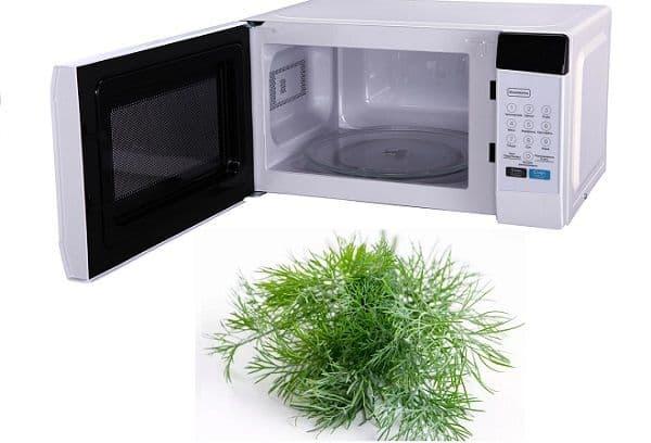 Микроволновая печь и укроп