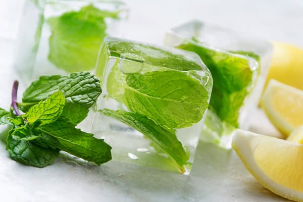 Мята и лимон в формочках для льда