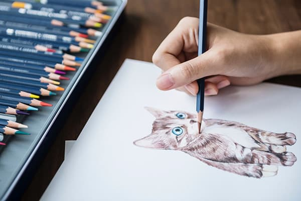 Рисование котенка цветными карандашами