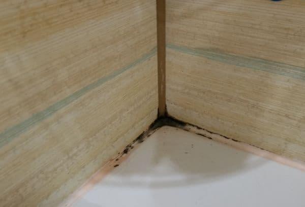 Плесень в ванной между швами