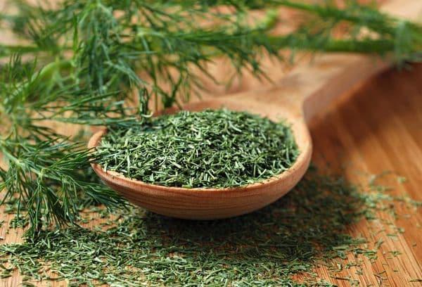 Зеленый сушеный укроп