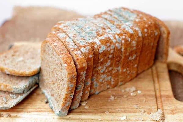 Заплесневелый хлеб