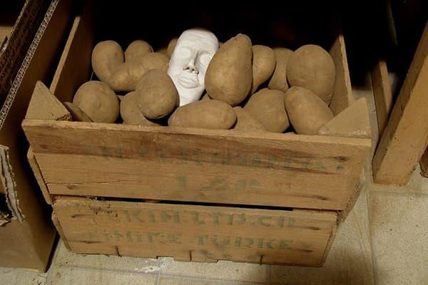 Картофель в ящике в кладовке