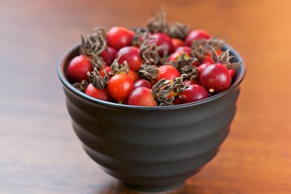 Пиала с плодами шиповника