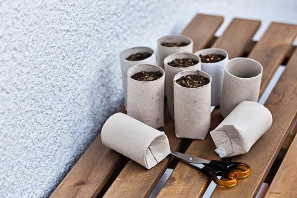 Стаканчики для рассады из втулок от бумажных полотенец