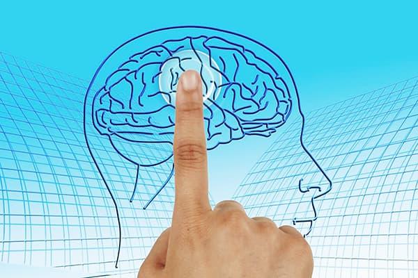 Поддержание здоровья нервной системы