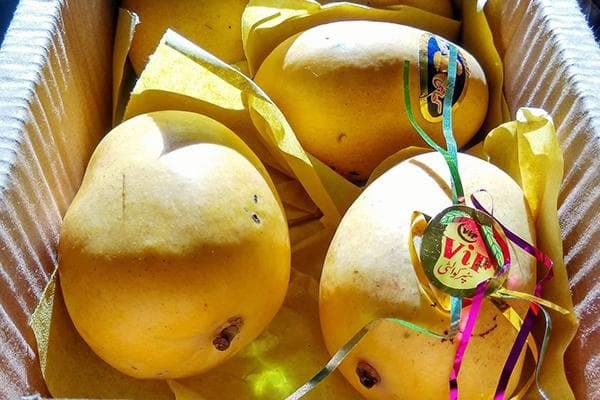 Плоды манго в коробке