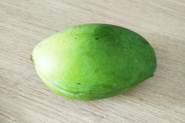Незрелый плод манго