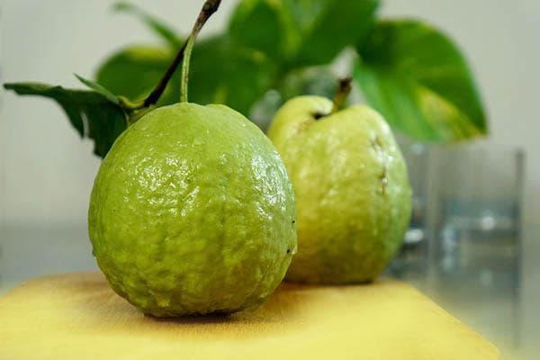 Свежие плоды гуавы