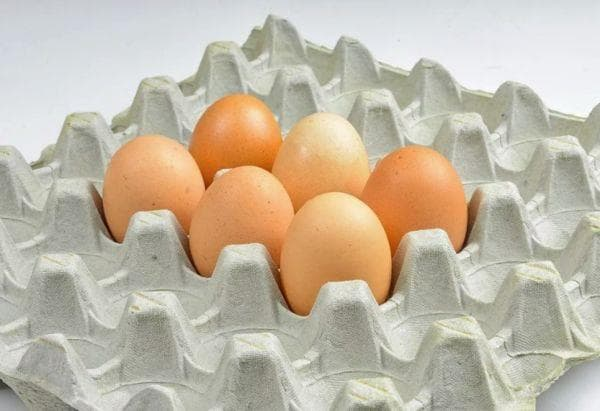 Лоток для куриных яиц
