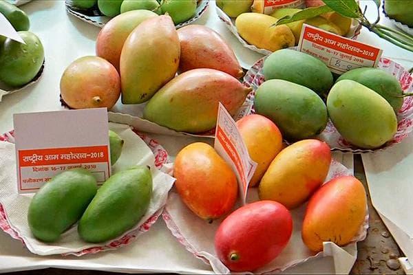 Разные виды манго