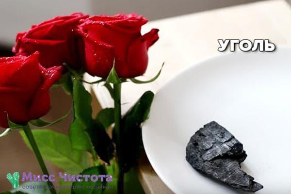 Древесный уголь для цветов в вазе